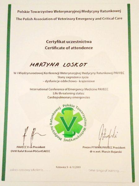 PAVECC - dyplom Martyna Loskot