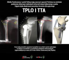 Szkolenie praktyczne dotyczące wybranych schorzeń stawu kolanowego