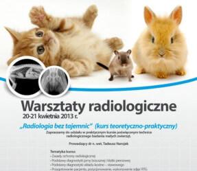 """Warsztaty radiologiczne """"Radiologia bez tajemnic"""" kwiecień"""