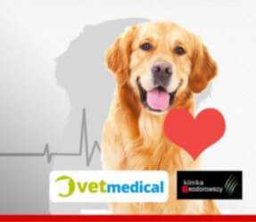 """KURS KARDIOLOGICZNY (USG) """"Podstawy echokardiografii w weterynarii małych zwierząt"""""""